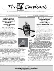 Oct & Nov 2018 Cardinal front page